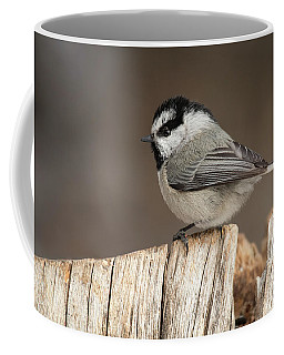 Mountain Chickadee Coffee Mug
