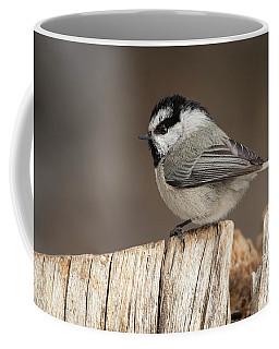 Mountain Chickadee Coffee Mug