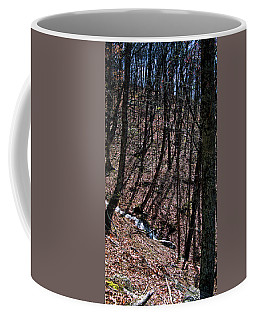 Mountain Creek Coffee Mug