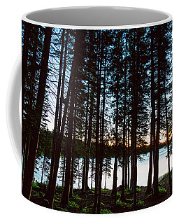 Coffee Mug featuring the photograph Mountain Forest Lake by James BO Insogna