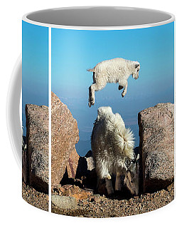 Mountain Goat Leap-frog Triptych Coffee Mug