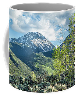 Mountain Greens Coffee Mug
