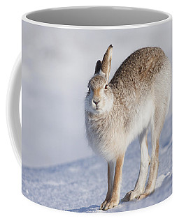 Mountain Hare In The Snow - Lepus Timidus  #2 Coffee Mug