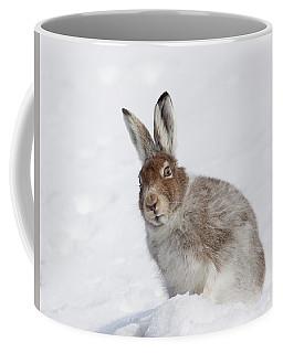 Mountain Hare In Winter Coffee Mug