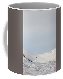 Mountain Hare On Hillside Coffee Mug