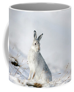 Mountain Hare Sitting In Snow Coffee Mug