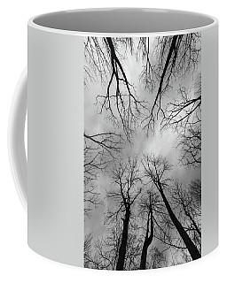 Mountain Lakes Nature Preserve Coffee Mug