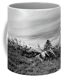 Mountain Landscape With Fallen Tree And View At Alps In Switzerland Coffee Mug