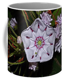 Mountain Laurel 005 Coffee Mug