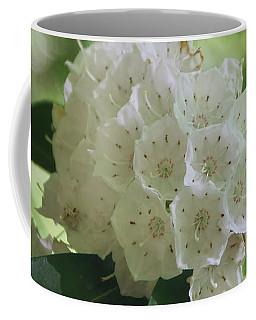 Coffee Mug featuring the photograph Mountain Laurel - Spring by Nikolyn McDonald
