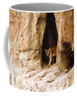 Mountain Lion In The Desert Coffee Mug