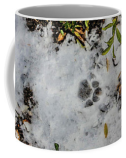 Mountain Lion Tracks In Snow Coffee Mug