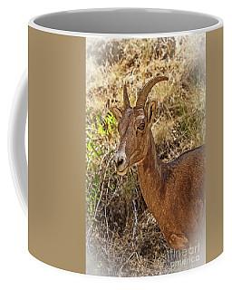 Mountain Sheep Profile Coffee Mug