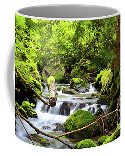 Mountain Stream In The Pacific Northwest Coffee Mug