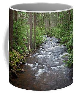 Mountain Stream Laurel Coffee Mug by John Stephens