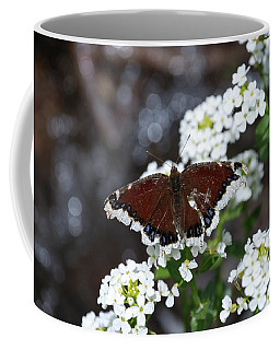Coffee Mug featuring the photograph Mourning Cloak by Jason Coward