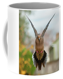 Coffee Mug featuring the photograph Mourning Dove Hover Mode by Jim Moore