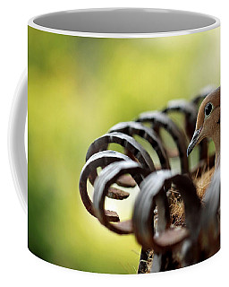 Mourning Dove In A Flower Planter Coffee Mug