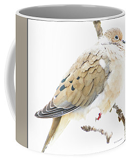 Mourning Dove, Snowy Morning Coffee Mug