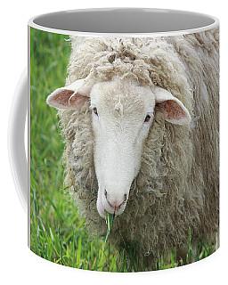 Mouthful Coffee Mug