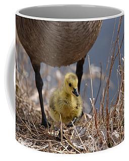 Move Little Feet Coffee Mug