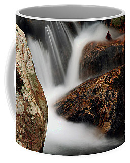 Coffee Mug featuring the photograph Moving Along by Darren Fisher