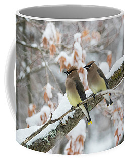 Mr. And Mrs. Cedar Wax Wing Coffee Mug