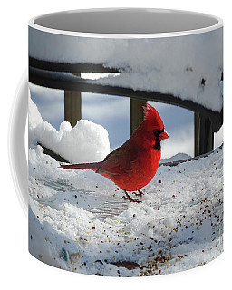 Coffee Mug featuring the photograph Mr. Cardinal by Melissa Messick