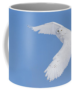 Mr Snowy Owl Coffee Mug