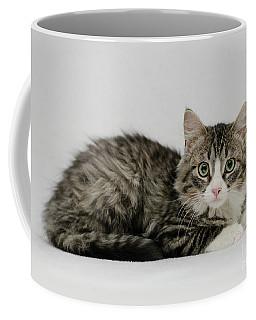 Ms. Alexia Coffee Mug