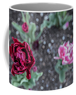 Msu Spring 16 Coffee Mug