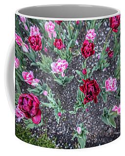 Msu Spring 17 Coffee Mug
