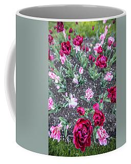 Msu Spring 18 Coffee Mug by John McGraw