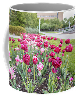 Msu Spring 19 Coffee Mug by John McGraw