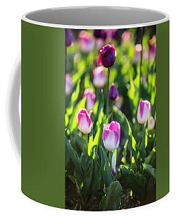 Msu Spring 2 Coffee Mug