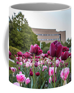 Msu Spring 21 Coffee Mug by John McGraw