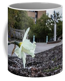Msu Spring 22 Coffee Mug by John McGraw