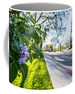 Msu Spring 42 Coffee Mug