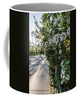Msu Spring 43 Coffee Mug by John McGraw