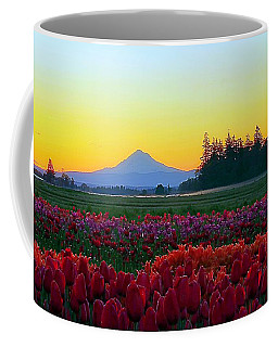 Mt. Hood Sunrise And Tulip Field Coffee Mug