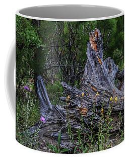Coffee Mug featuring the photograph Mt. Lemmon by Elaine Malott