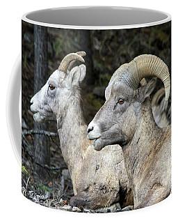 Mt Sheep  Coffee Mug