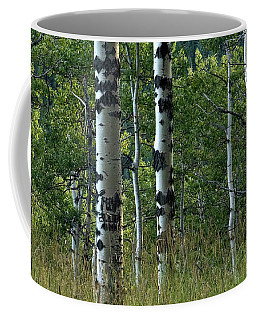 Coffee Mug featuring the photograph Mug - Aspen Trees by Inge Riis McDonald