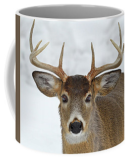 Coffee Mug featuring the photograph Mug Shot by Tony Beck