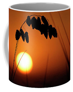 Coffee Mug featuring the photograph Mug - Sunset by Inge Riis McDonald