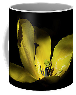 Coffee Mug featuring the photograph Mug - Yellow Tulip by Inge Riis McDonald