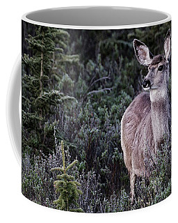Mule Deer Doe Coffee Mug