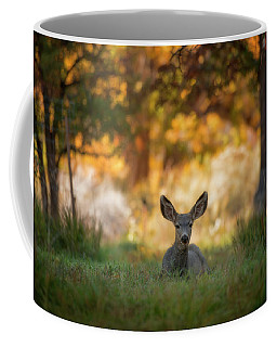 Mule Deer In Apple Orchard Coffee Mug