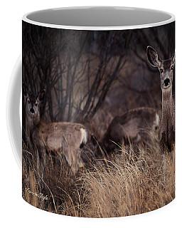 Mule Deer Mama And Twins Coffee Mug