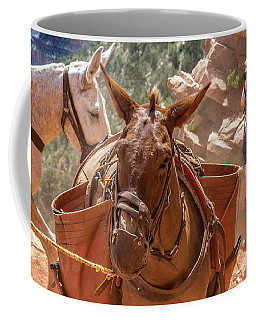Mule Train On The South Kaibab Trail Coffee Mug